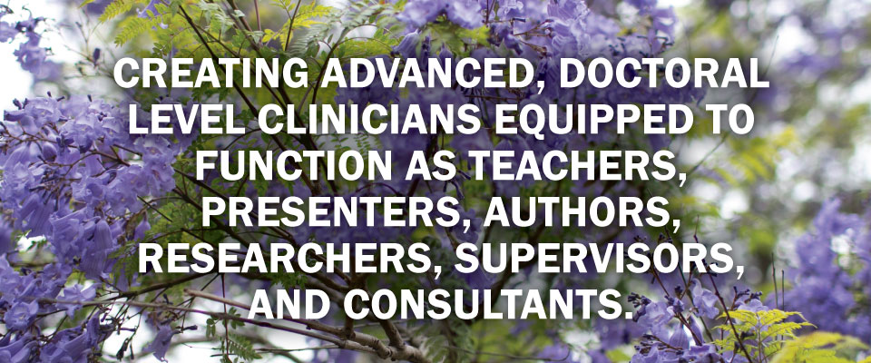 doctoral-level-clinicians-as-teachers-authors